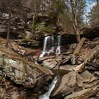 Early Spring at B. Reynolds Falls by Tim Devine