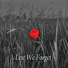 Lest we Forget by Michael Rowley