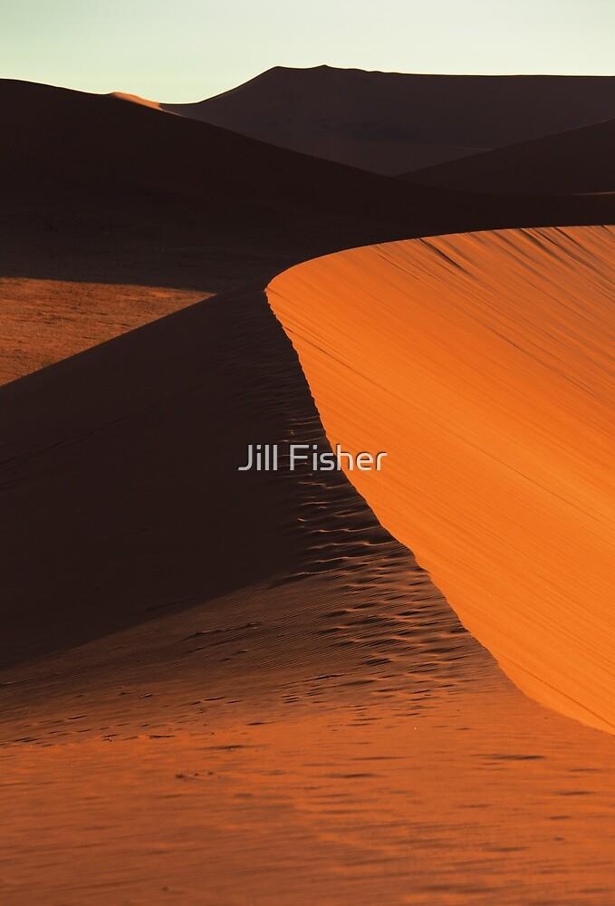 Desert Dune Detail by Jill Fisher