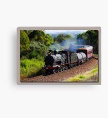 Steam Train Taree nsw Canvas Print