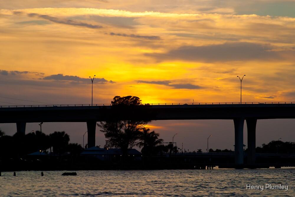 Sunset Behind Tree Stuart Florida by Henry Plumley
