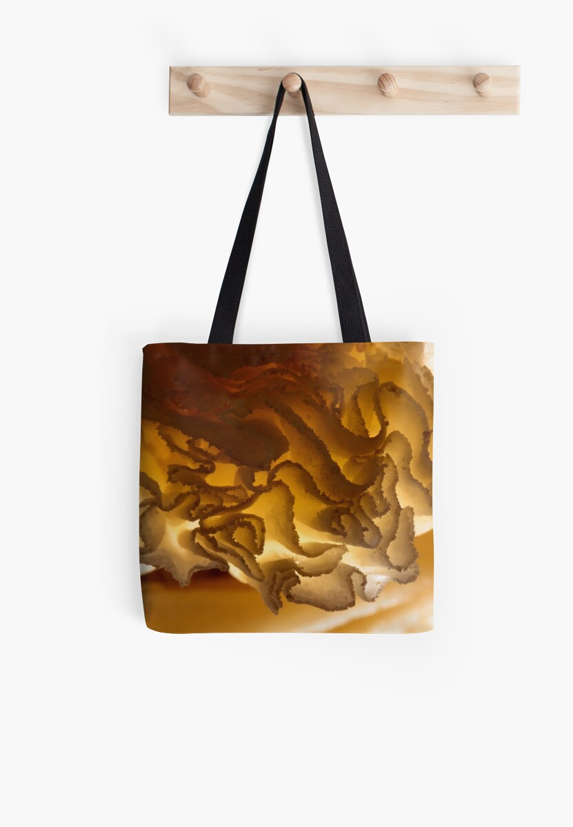 gold? what is this? by yvesrossetti