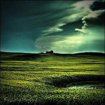 Storm by ajlphotography