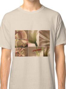 Symbolizing Feminine Sexuality Classic T-Shirt