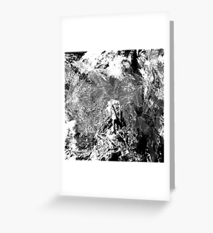 Symphony in White and Black Greeting Card
