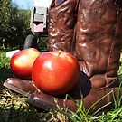 Apples and Cowboy Boots by endomental Artistry