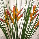 Heliconia and Stars by peterrobinsonjr