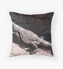 """This is really my Best Side"" - Las Vegas Chuckwalla Lizard Throw Pillow"