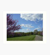 Country Garden Path in Spring Art Print