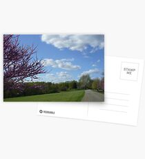 Country Garden Path in Spring Postcards