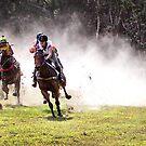 Bush Racing by Sue  Thomson