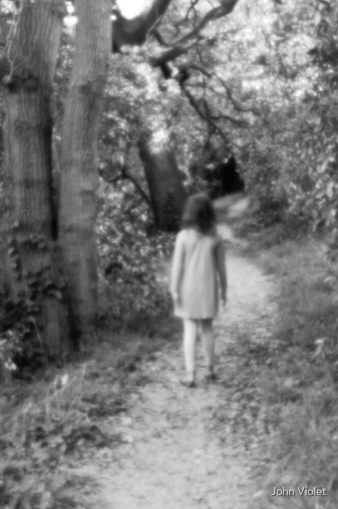 Forest Walk by John Violet