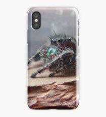 Boris the Spider or Arachnid iPhone Case/Skin