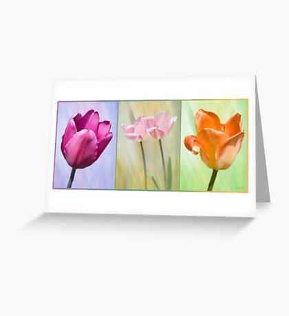 Variety Greeting Card