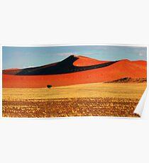 Desert Dunes Poster