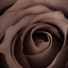 Pale Petticoat by Cordelia