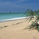 Kuta (Lombok) Beach 3 by Adri  Padmos
