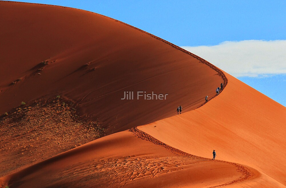 The Long Climb To the Top by Jill Fisher