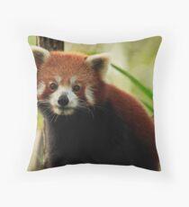Gorgeous Red Panda Throw Pillow