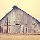 The Old Barn by Hilary Walker