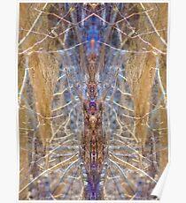 Sacred Spider Poster