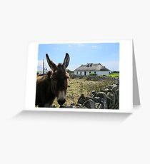 Irish Donkey Greeting Card