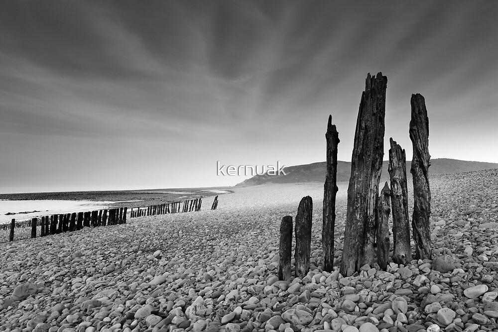Groynes at Porlock Weir by kernuak