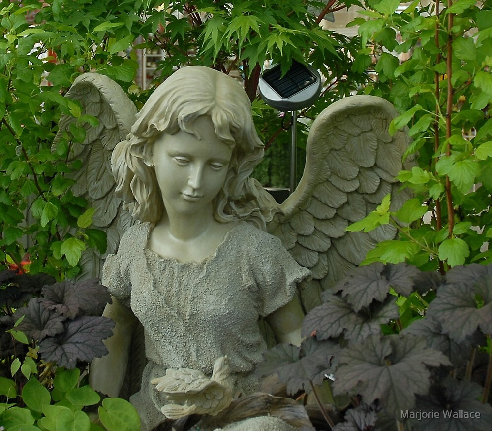Garden Angel and Dove by Marjorie Wallace Redbubble