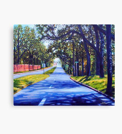 'Providence Road'  Canvas Print
