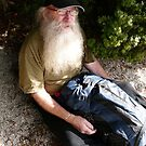 Bush Man of Cradle by DEB CAMERON