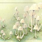 Toadstools card by Laura Grogan