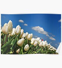 Spring on Flakkee 2 Poster