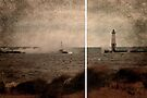 Frankfort Port Light by Shelly Harris