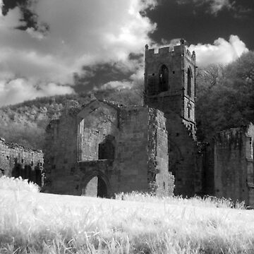 Mount Grace Priory, North Yorkshire by leetwigger