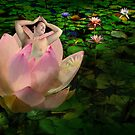 Waterlilies by Peter Hammer