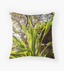 16th February 2012 Throw Pillow