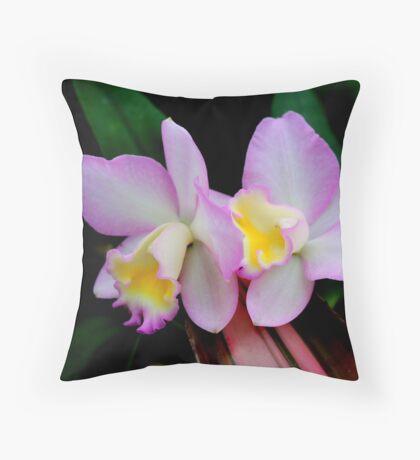 Cattleya Orchid 2 Throw Pillow