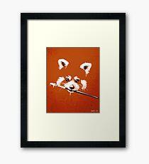 Ailuridae Framed Print