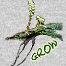New Life - Grow by Claire Needham
