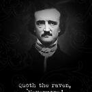 Edgar Allan Poe - The raven by TardMonkey