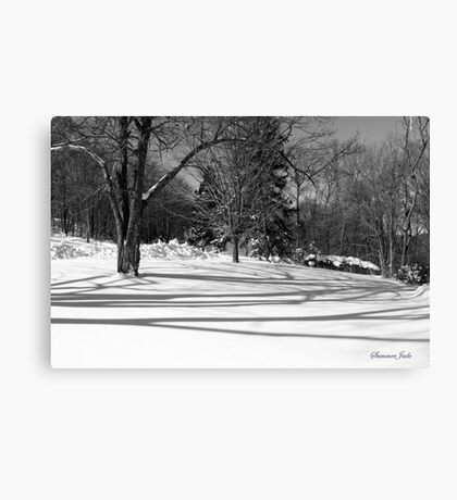 That Cold Winter Sun ~ On Snow Canvas Print