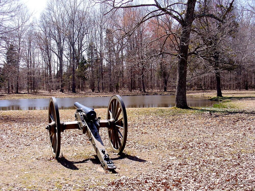 Cannon at Shiloh Battlefield by Paula Betz