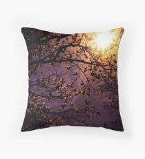 Stars in an Earthly Sky Throw Pillow