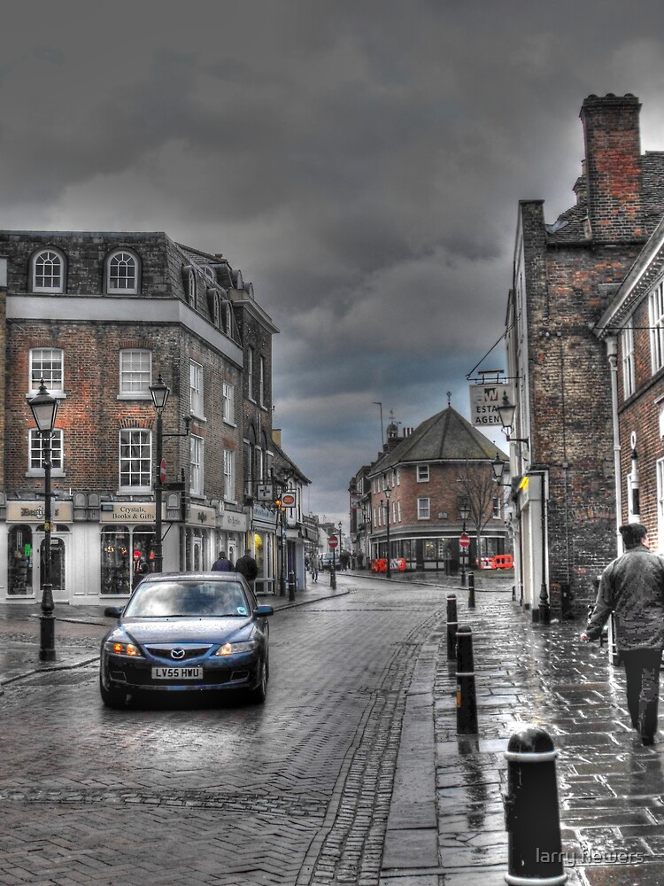 Rochester in the rain  by larry flewers