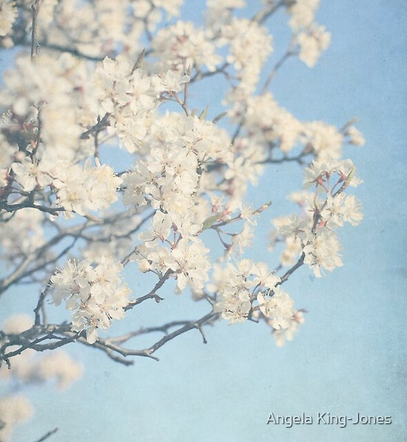 Budding blossoms by Angela King-Jones