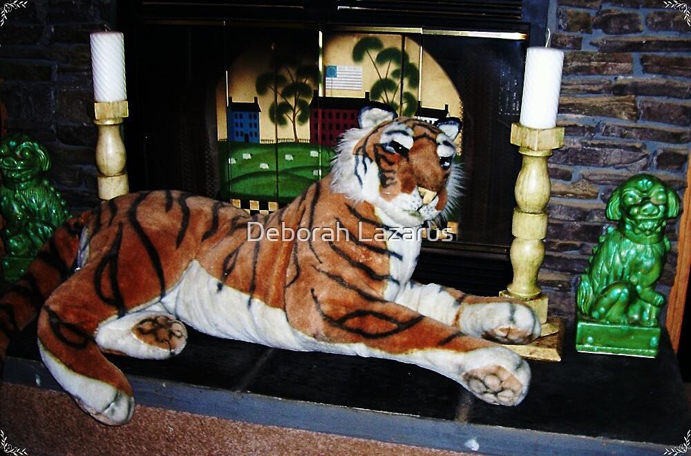 Antonio, Our House Cat by Deborah Lazarus