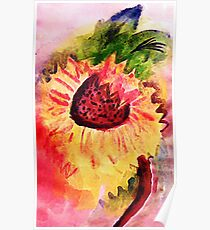 The loose style sunflower, watercolor Poster
