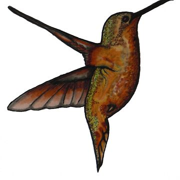 Hummingbird by Averroon