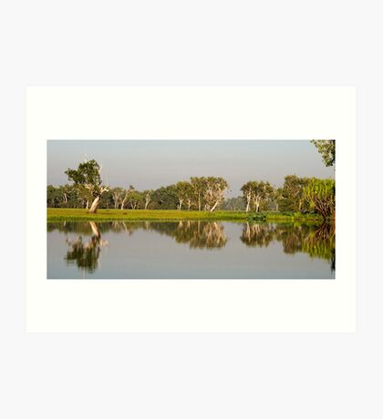 Yellow Water Billabong  Art Print