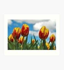 Spring on Flakkee 5 Art Print